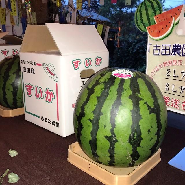 本日より販売波田産のスイカ